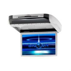 BIGSON S-1021